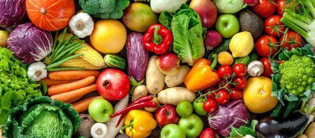 The Great Debate: Diet Vs. Diet