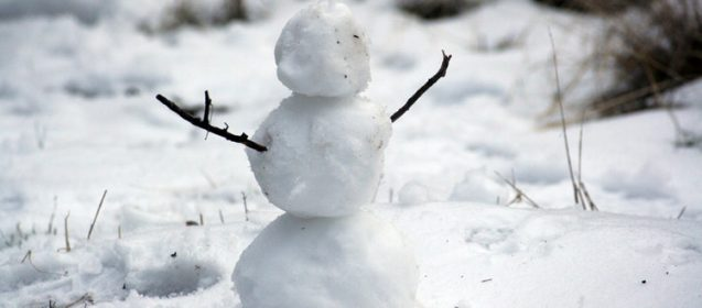 Whats Your Favorite Snow Activity?