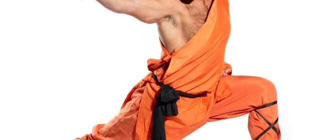 Kung Fu Vs Muay Thai