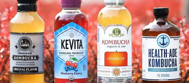 Have You Tried Kombucha