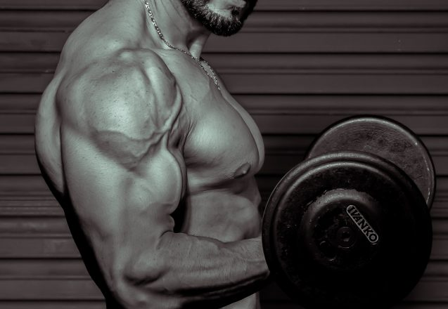 Muscle Gain Myths