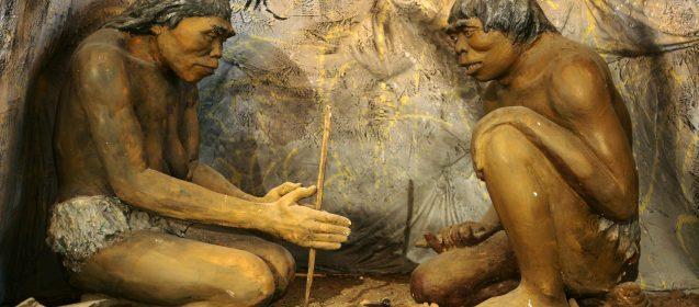 Should We Eat Like Cavemen