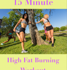 15 Minute High Fat Burning At Home
