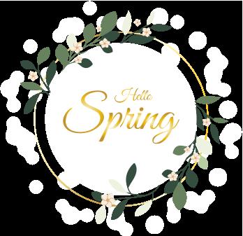 hello spring boot camp logo