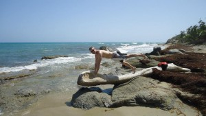 Eric Hansen - A Plank on a log