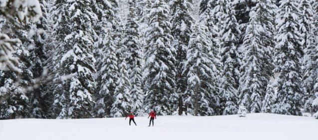 Indoor Activities For Winter Workouts
